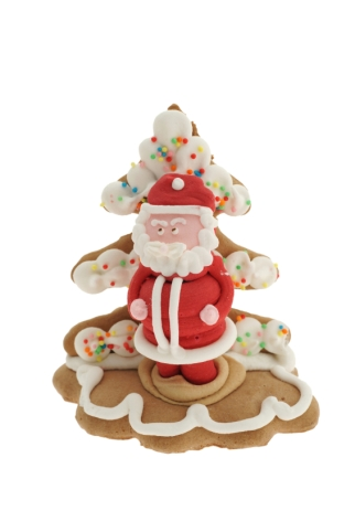 Santa Christmas Cookie
